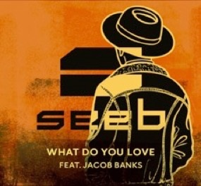 Seeb - What Do You Love